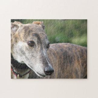 Greyhound jigsaw puzzle (p401) Alice