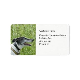 Greyhound labels (p379
