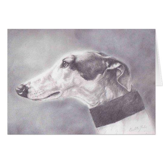 Greyhound Pencil Portrait Dog Art Greeting Card