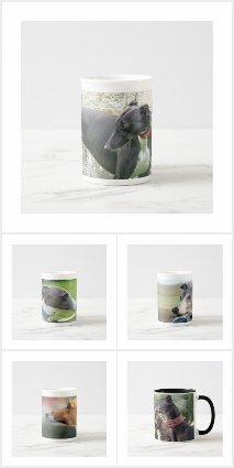 Greyhound photo mugs