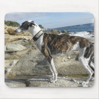 Greyhound Photographs Mouse Pad