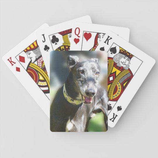 Greyhound playing cards (p300)