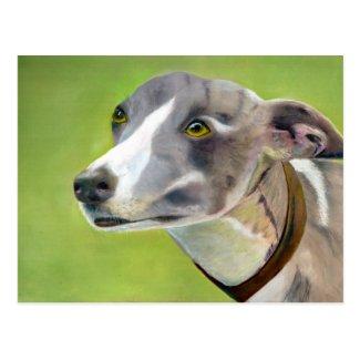 Greyhound postcard (a404) title=