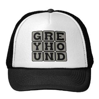 Greyhound, Racing Dog Trucker Hat