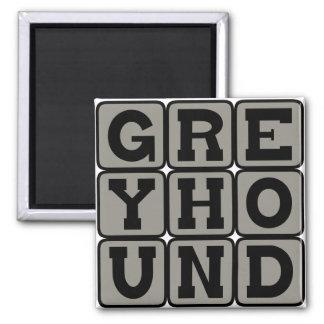 Greyhound, Racing Dog Magnets