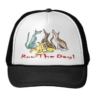 greyhound roo cap