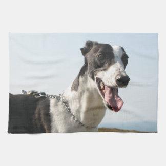 Greyhound teatowel - Handsome Boy P4 Tea Towel
