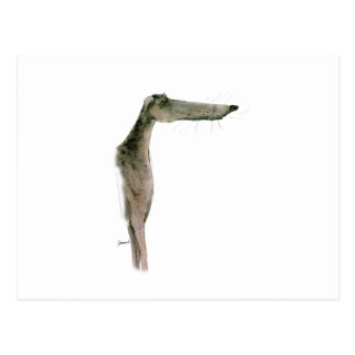 Greyhound, tony fernandes postcard