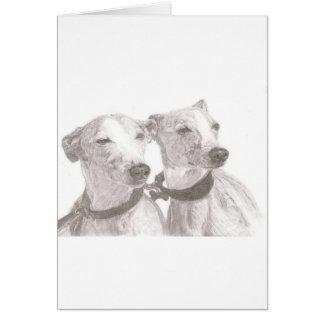 Greyhounds Card