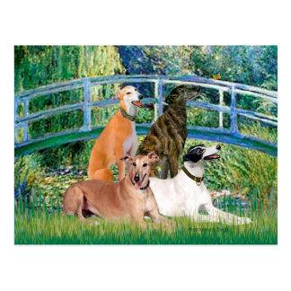 Greyhounds (four) - Bridge Postcard