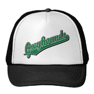 Greyhounds in Green Mesh Hat
