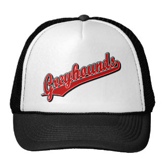Greyhounds in Red Trucker Hats