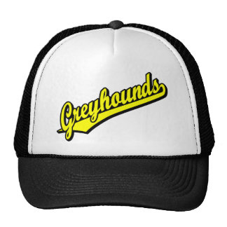 Greyhounds in Yellow Hats
