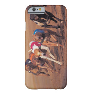 Greyhounds racing on track barely there iPhone 6 case