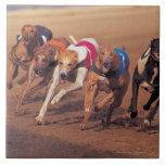 Greyhounds racing on track ceramic tiles