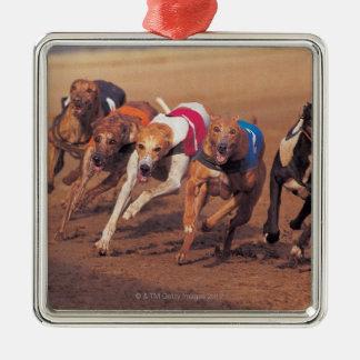 Greyhounds racing on track christmas ornament