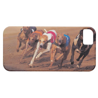 Greyhounds racing on track iPhone 5 covers