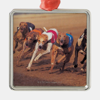 Greyhounds racing on track Silver-Colored square decoration