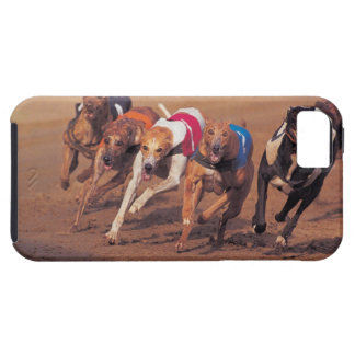 Greyhounds racing on track tough iPhone 5 case