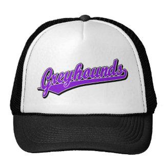 Greyhounds script logo in purple trucker hats