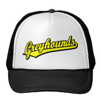 Greyhounds script logo in yellow mesh hat