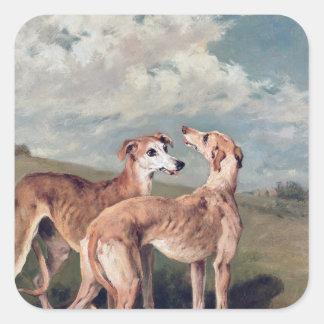 Greyhounds Square Sticker