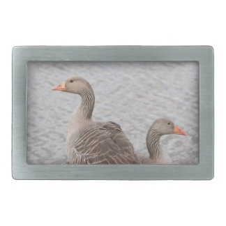 Greylag Geese Belt Buckle