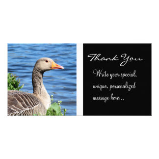 Greylag Goose Thank You Picture Card