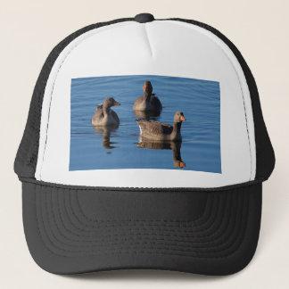 Greylag Goose Trio Trucker Hat