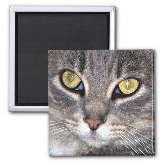 greys yellow eyes magnet