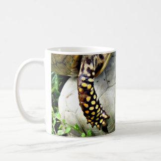 Grieving Turtle & Shell Basic White Mug