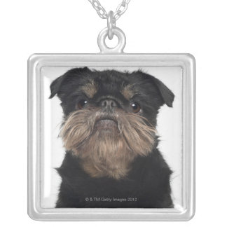 Griffon Bruxellois close-up Silver Plated Necklace