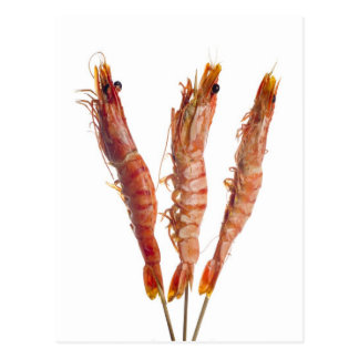 Grilled tiger prawn on a skewer postcard