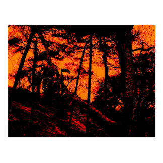 Grim Reaper in Scary Orange Lit Forest Postcard