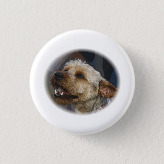 Grinning Border Terrier Cross 3 Cm Round Badge