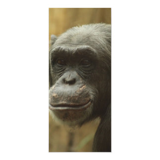 grinning chimp 10 cm x 24 cm invitation card