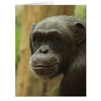 grinning chimp big greeting card