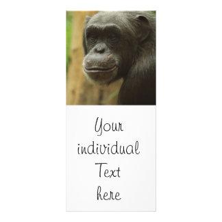 grinning chimp customized rack card