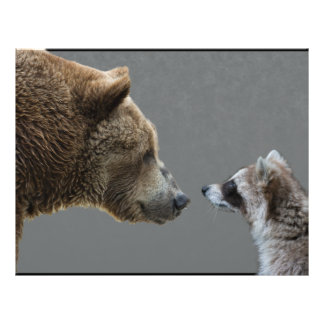 Grizzle Bear Meets Raccoon 21.5 Cm X 28 Cm Flyer