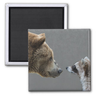 Grizzle Bear Meets Raccoon Square Magnet