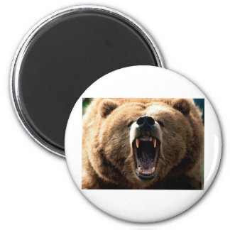 Grizzly 6 Cm Round Magnet