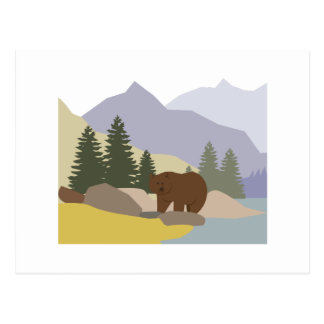 Grizzly Alaska Postcard