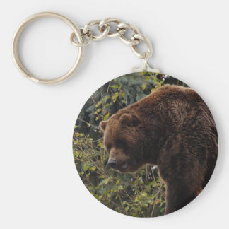 grizzly-bear-009 key ring
