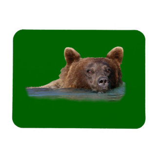 grizzly bear and emerald water vinyl magnet