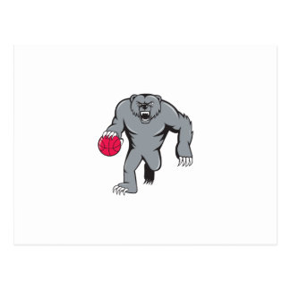 Grizzly Bear Angry Dribbling Basketball Isolated Postcard