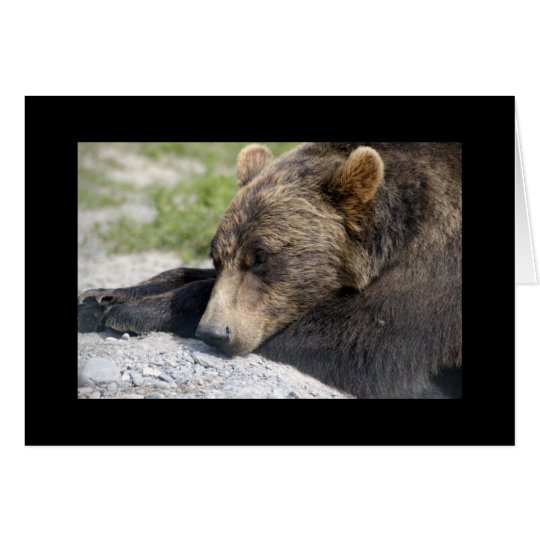 Grizzly Bear Blank Card