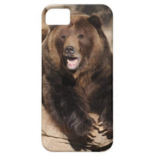 Grizzly Bear Boar iPhone 5 Cover