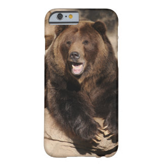Grizzly Bear Boar Barely There iPhone 6 Case