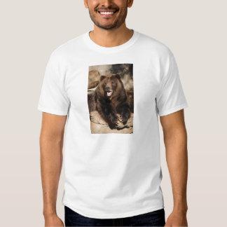 Grizzly Bear Boar T Shirt