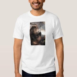 Grizzly Bear Boar T-shirt